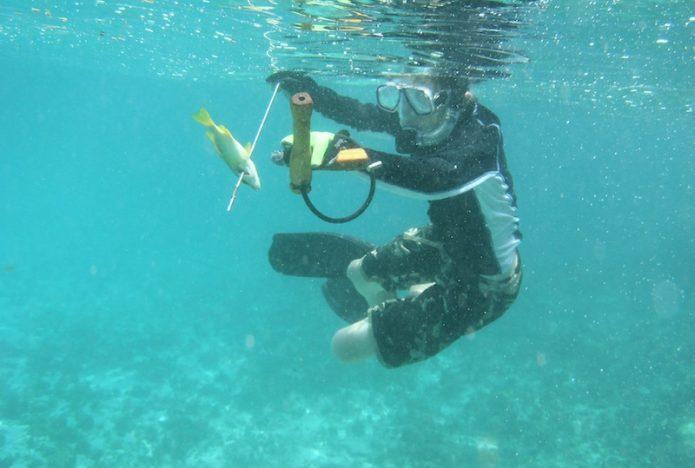 Spearfishing in Pattaya